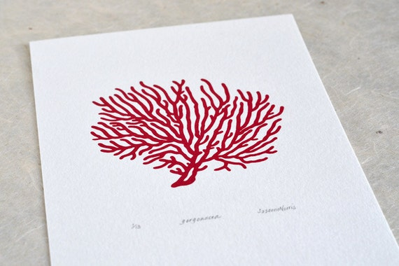 Sea Fan Coral / Gorgonacea 'specimen' - Limited edition one-colour screenprint