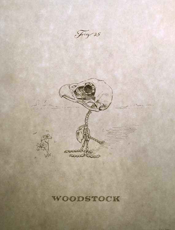 Woodstock Skeleton Print 8x10
