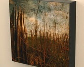 Wall Decor - 10 in x 10 in Photography Wall Block - Your Choice of Print
