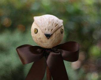 Klara, the tawny owl