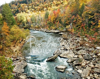 River in the Big South Fork - 12x18 Photograph