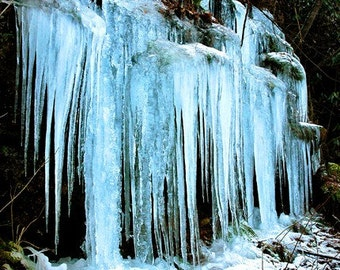 Icicles - 8x10 Photograph