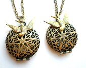 Set of Two -Fly Above - Gold Locket and Swallow Necklaces