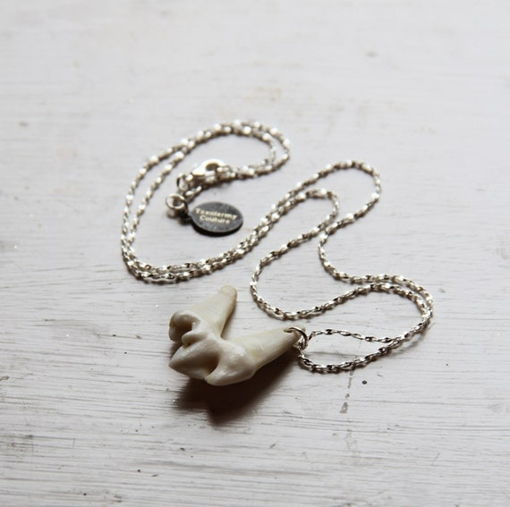 Last one TAXIDERMY COUTURE Wolf Tooth 925 Sterling Silver Chain