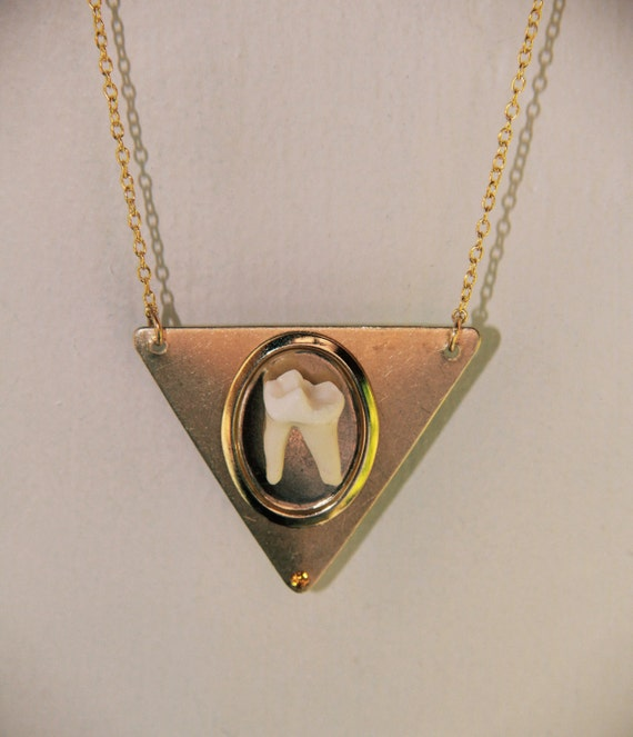 TAXIDERMY COUTURE Coyote Molar Tooth Geometric Brass Triangle Necklace Original Design