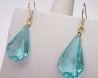 Blue Plastic Wire Wrapped Earrings
