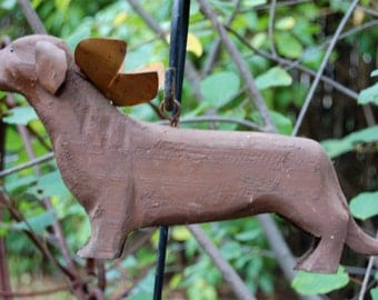 carved short hair dachshund