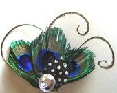 Aster Petite Triple Peacock Feather Rhinestone Hair Fascinator Clip  Ready to Ship