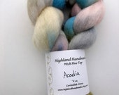 Acadia - Corriedale Top, 4 oz