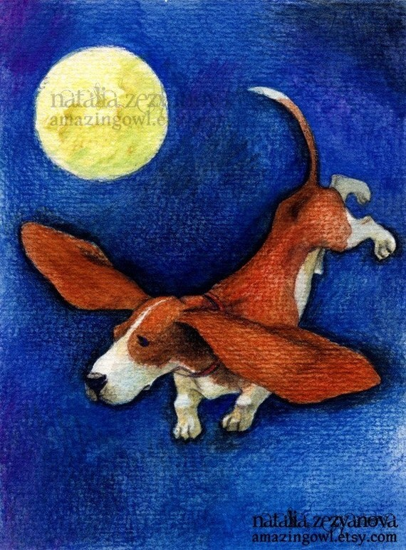 Flight of the Basset - 8 x 10 giclee print