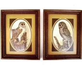 Owl Prints E. Rambow Framed Set of 2 1970s