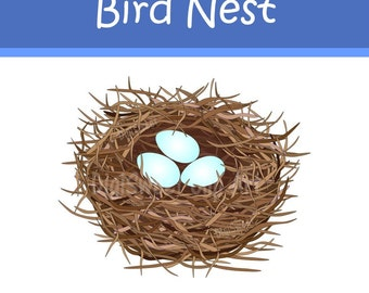 Instant Download - Very Detailed Bird Nest with Eggs Clip Art - Blue & Pink Eggs incl. - Personal and Commercial Use DS62