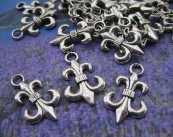 30pcs 23.6x14.4mm antiqued silver fuer de lys symbol charms