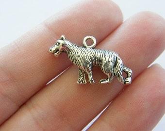 6 Wolf charms tibetan silver A284