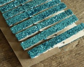 tiffany blue glittered clothes pins