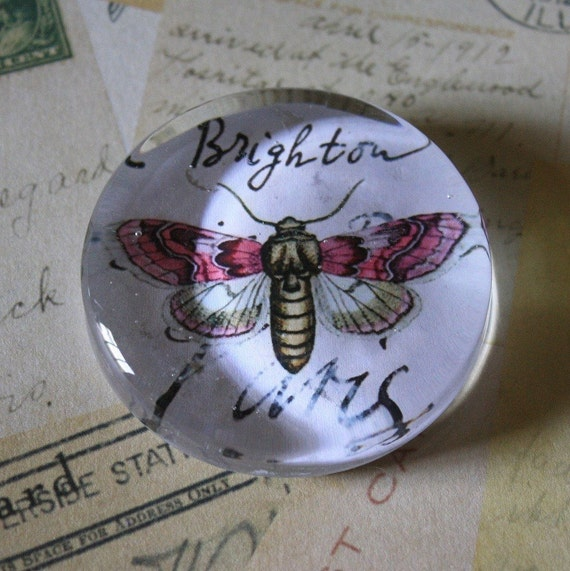 shabby and chic pink moth paperweight