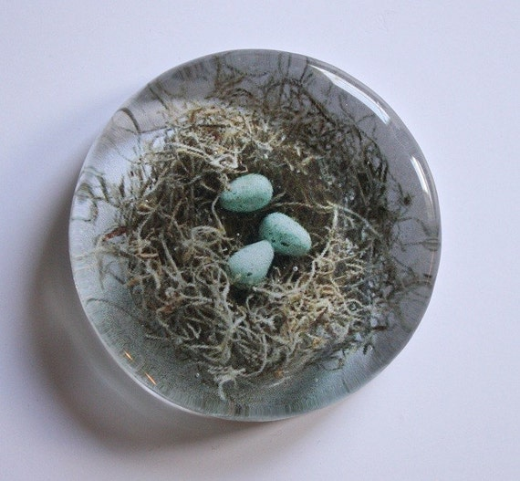 RESERVED LISTING robins nest paperweight - set of 6