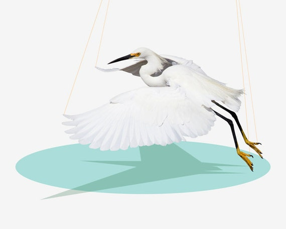 Animal Art, Bird Art, Snowy Egret, Bird Photography Print, Fine Art Print, Toyland