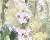 Soft Pastel Floral Montage spring decor flowers photo art print home decor, bedroom decor, floral wall decor
