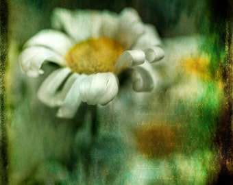 Yesterday 11x14 Fine Art Print - daisy vintage handwriting grunge texture - affordable home decor