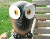 Vintage Owl Big Eyed Brown Black