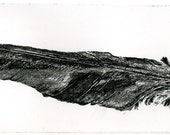 Feather, RAVEN Feather, Raven artwork , Raven, Crow,  Etching10 inch x 3.5 inch 2012