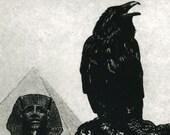 SALE Raven artwork , Raven, crow, etching, 5 inch x 7 inch 2011
