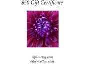 Gift Certificate Eileen Colton Photography