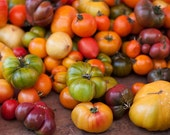 Organic heirloom tomato seeds, mixed varieties all delicious