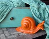 Holden Snail