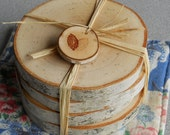 Birch Coasters Set of 4 Natural Home Accent Wonderful Gift