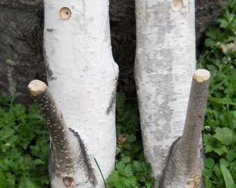 Large Birch Branch Hooks