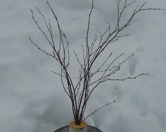 Rustic Birch Branch Centerpiece, Holiday, Wedding, Mantle Decor