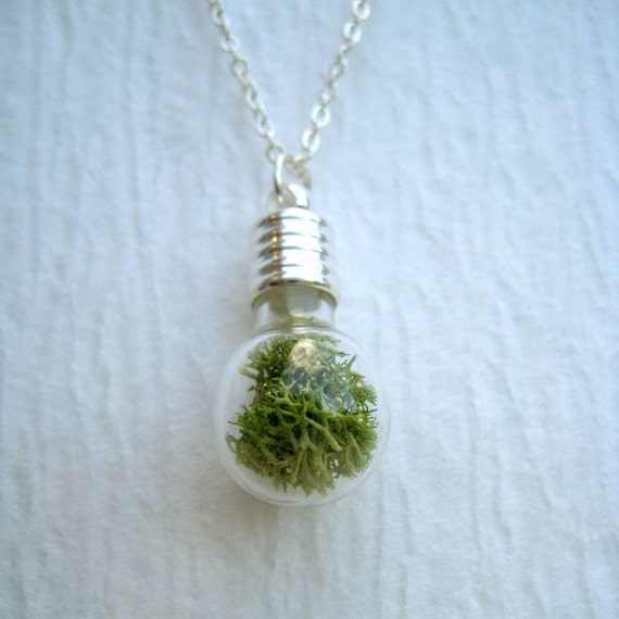 Items Similar To Terrarium Pendant Glass Moss Terrarium