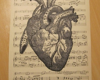 shabby chic vintage anatomical heart on vintage sheet music