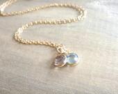 Two Birthstone Swarovski Crystal Necklace in Gold - Personalized,Birthday, Kids, Children, Family, Grandchildren, Mother's Day, Mom