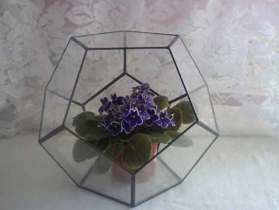 Glass Terrarium Geometric Pentagon Globe Planter  Bowl