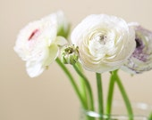 Vanilla Flowers (4x4)