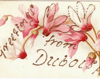 DUBOIS, Pennsylvania 1907 Glitter PC Greetings, CYCLAMEN, Shooting Stars