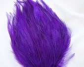 ROYAL PURPLE Feather Pad (rooster feather) Applique for millinery,mardi gras masks,costume hat,flapper feather fascinator,children headband