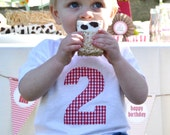 Boys Farm Party Birthday Number Shirt in Red Gingham Check