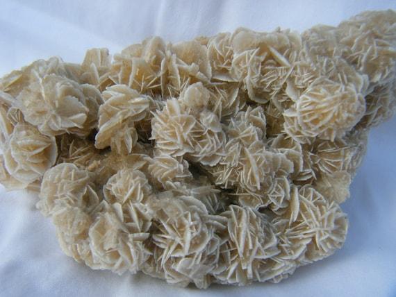 Desert Rose Cluster - Selenite Cluster - Large