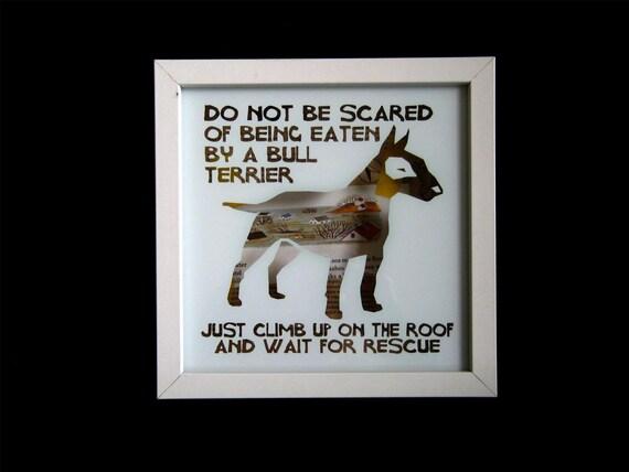 bull terriers have little floods inside