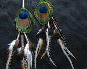 Barncats Peacock Feather earrings by Ruby Feathers