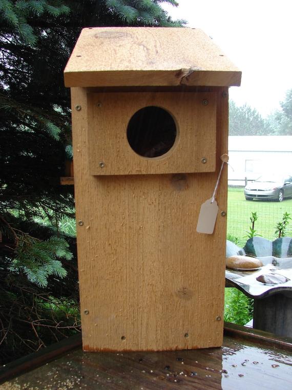 Western Cedar Owl or American Kestrel Nesting Box