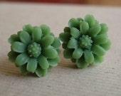 Flower Earrings, Olive Daisy on Antiqued Brass Post, Stud Earrings, Post Earrings, Green Flower, Nature Jewelry