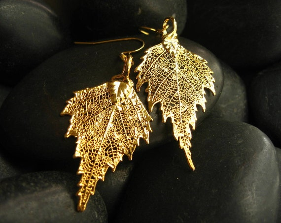 FREE Shipping to the USA  Real Birch Leaf Earrings  - 24kt Gold - Leaf  Earrings - Graduation Gift