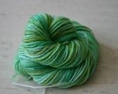 De-stashing  Hand Painted Wool Yarn Light Green Mix