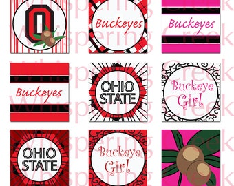 Ohio State Buckeye Inspired Collage Sheet