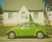 Green Beetle Polaroid - 14x14 Print